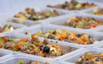 Cook Your Dog's Homemade Dog Food in Bulk