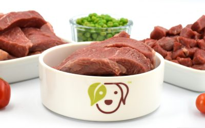 (CN) Why You Should Vary the Protein in Homemade Dog Food